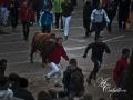 toroantruejo2015 (1)