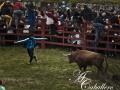 toroantruejo2015 (2)