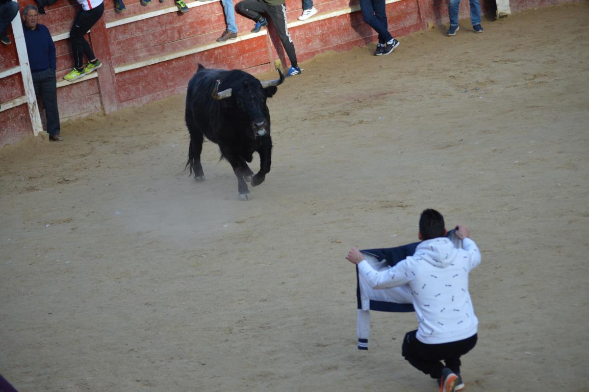 2018 toro del aguardiente (12)