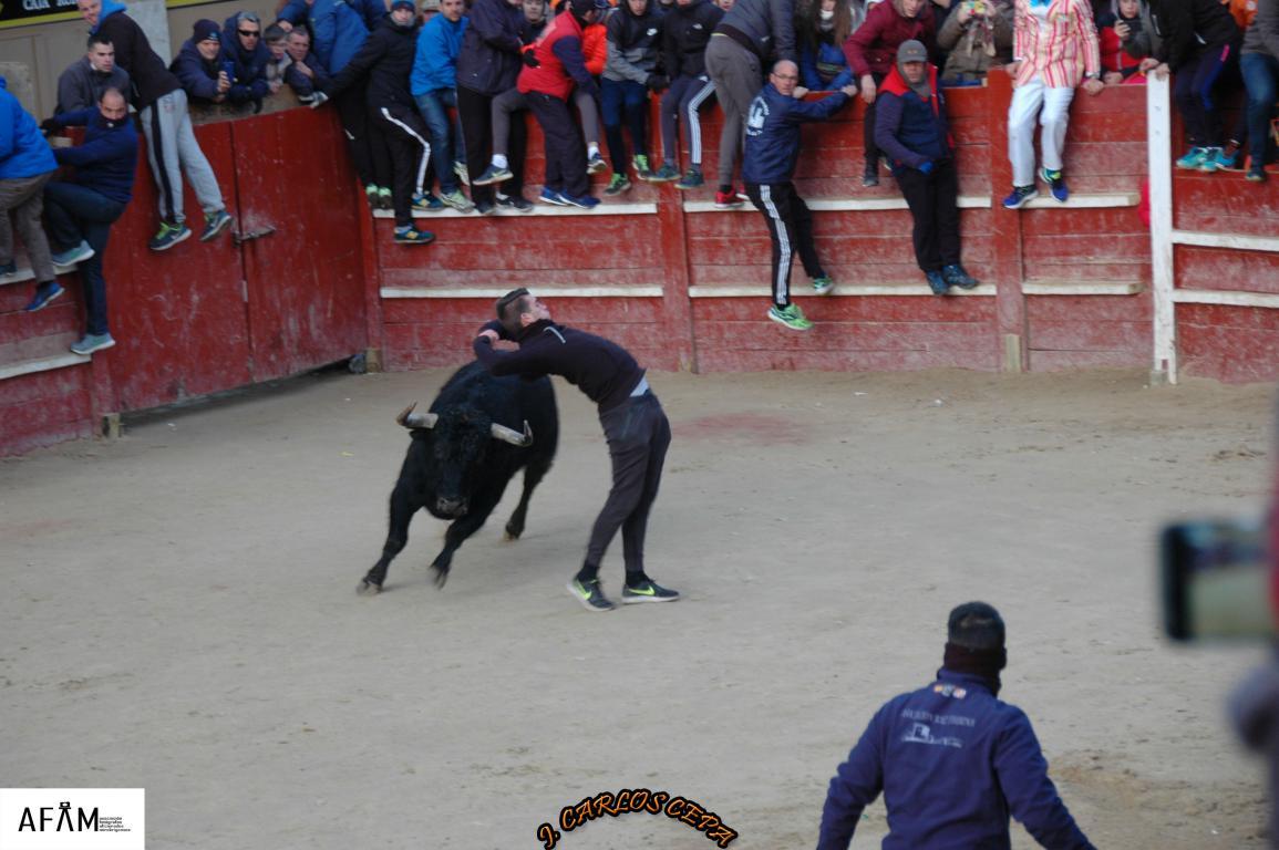 2018 toro del aguardiente (21)