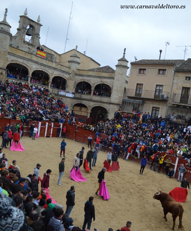 capeas festivales 2018 (21)