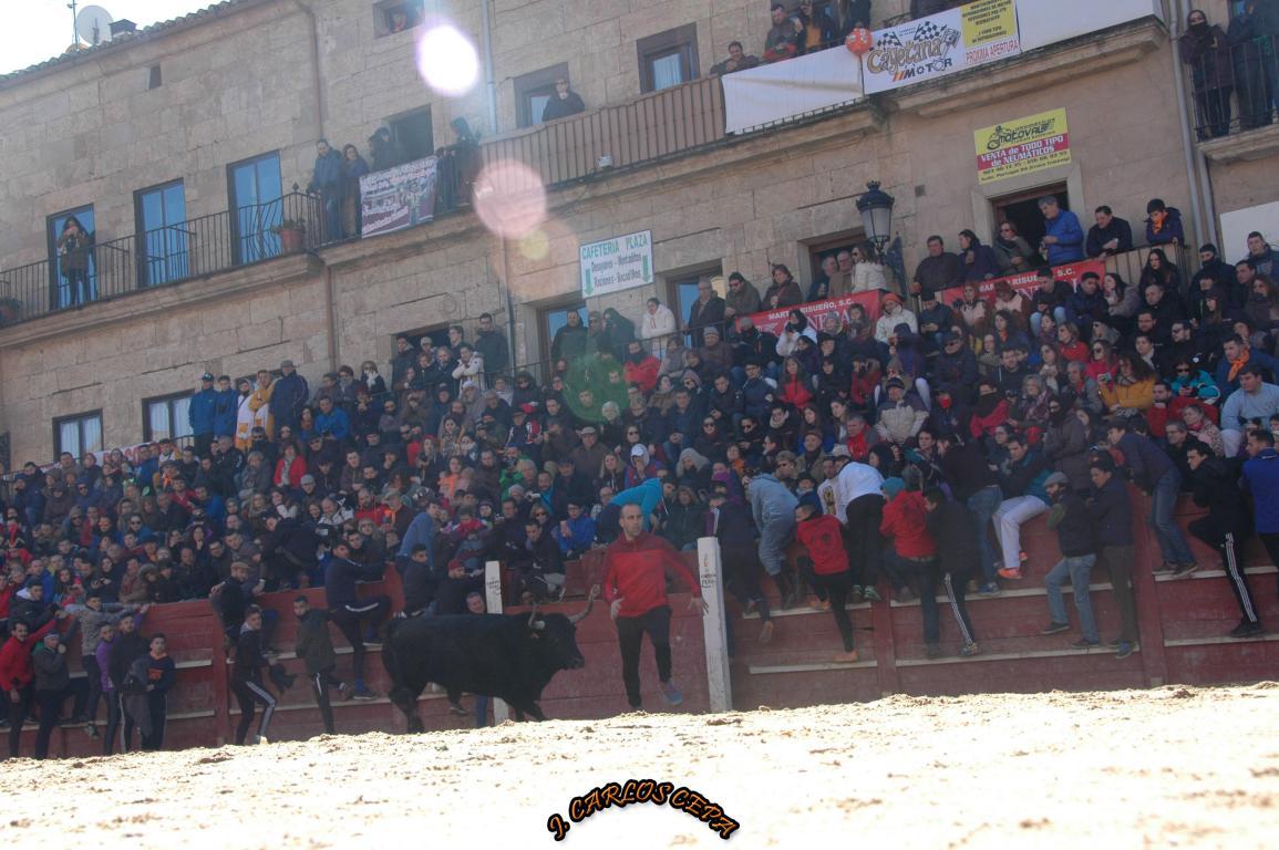 capeas festivales 2018 (43)