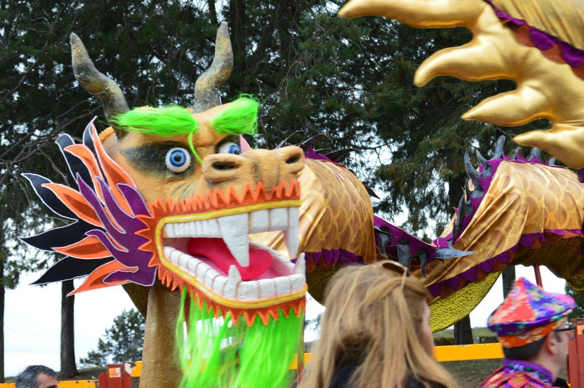 gente del carnaval 2018 (35)
